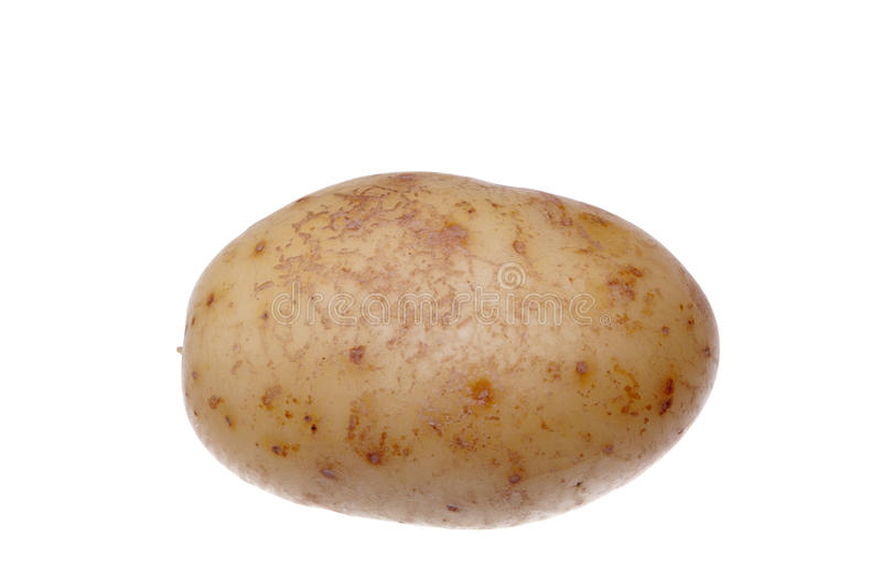 η πατάτα έπλυνε το λευκό στοκ εικόνες