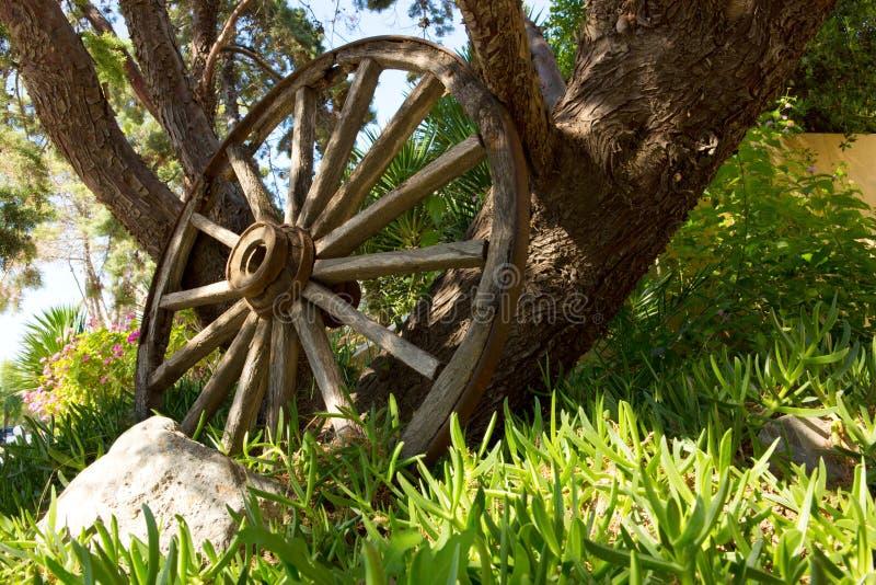 Η παλαιά ξύλινα ρόδα και το δέντρο στοκ φωτογραφίες