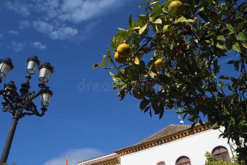 Η παλαιά πόλη Marbella στο Κόστα ντελ Σολ Ανδαλουσία, Ισπανία στοκ εικόνα