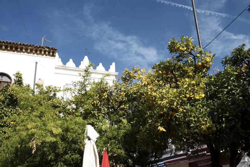 Η παλαιά πόλη Marbella στο Κόστα ντελ Σολ Ανδαλουσία, Ισπανία στοκ φωτογραφίες