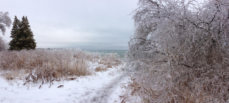 η περιοχή κοντά να κάνει σκι Ελβετία πανοράματος στο χειμώνα στοκ φωτογραφία