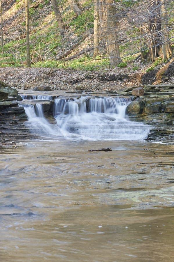 Η πικρία πέφτει ορμητικά σημεία ποταμού ποταμών στοκ εικόνες