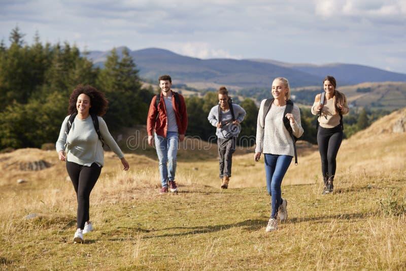 Η πολυ εθνική ομάδα πέντε ευτυχών νέων ενήλικων φίλων που περπατούν σε μια αγροτική πορεία κατά τη διάρκεια ενός πεζοπορώ βουνών, στοκ φωτογραφία