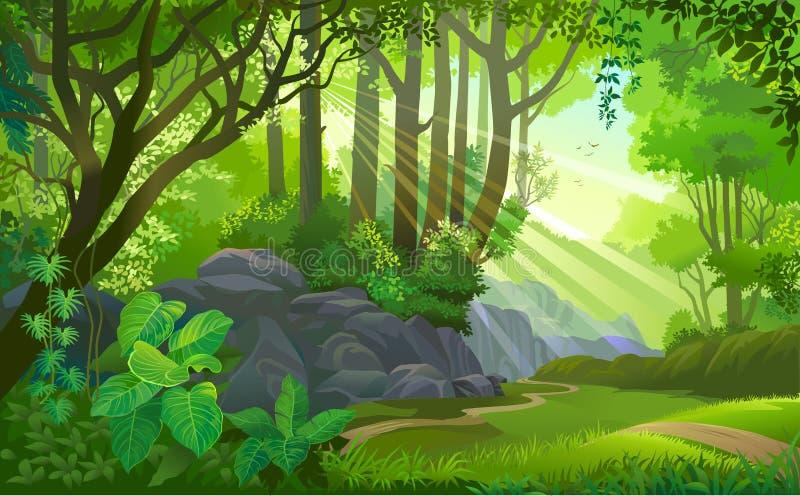 Η πορεία πέρα από μια πυκνή ζούγκλα με τα δέντρα, τη χλόη, τους λίθους, το ρύπο, τους Μπους και τις εγκαταστάσεις απεικόνιση αποθεμάτων