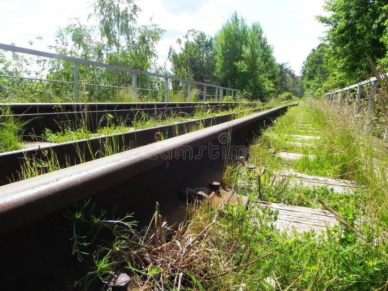 Η πορεία του σιδηροδρόμου Τα περάσματα σιδηροδρόμων μέσω των όμορφων τοπίων r στοκ εικόνες
