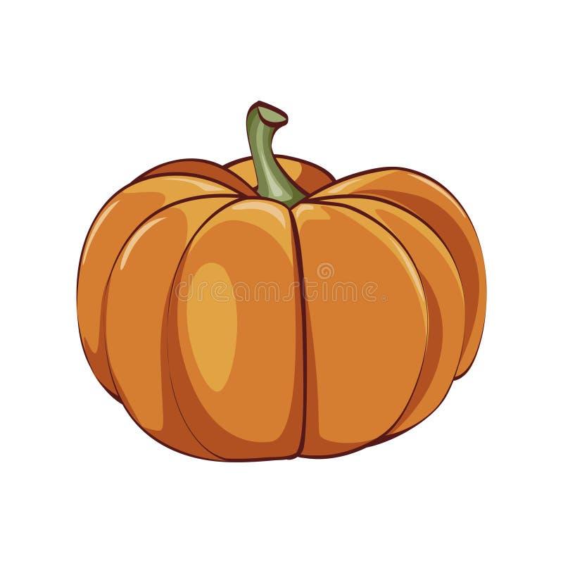 Η πορτοκαλιά κολοκύθα απομονώνει στο λευκό διανυσματική απεικόνιση