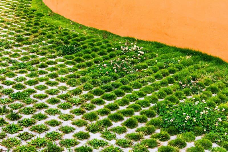 Η πράσινη ανάπτυξη χλόης στις τρύπες της πέτρας εμποδίζει τη διάβαση πεζών στο θερινό πάρκο Πάτωμα τούβλων επίστρωσης υποβάθρου σ στοκ φωτογραφία με δικαίωμα ελεύθερης χρήσης