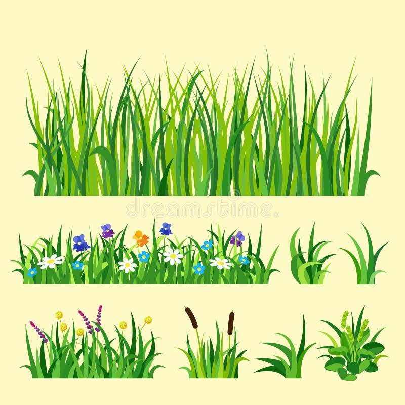 Η πράσινη διανυσματική απεικόνιση στοιχείων σχεδίου φύσης χλόης αυξάνεται το υπόβαθρο φύσης γεωργίας ελεύθερη απεικόνιση δικαιώματος