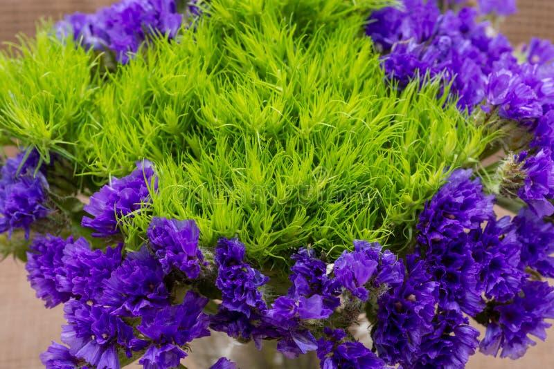 Η πράσινη σφαίρα Dianthus Barbatus ο γλυκός William και το σκοτεινό πορφυρό sinuatum Statice Limonium ανθίζουν φυσικό burlap Πορφ στοκ εικόνες
