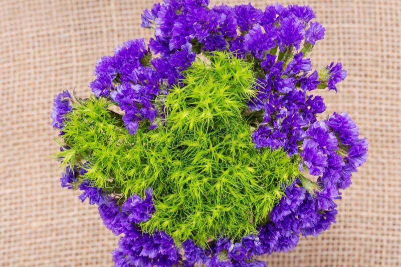 Η πράσινη σφαίρα Dianthus Barbatus ο γλυκός William και το σκοτεινό πορφυρό sinuatum Statice Limonium ανθίζουν φυσικό burlap Πορφ στοκ εικόνα με δικαίωμα ελεύθερης χρήσης
