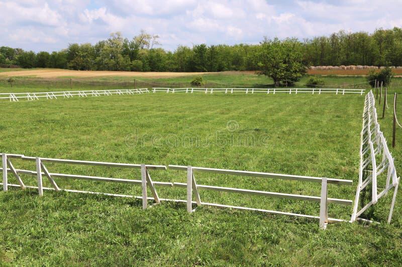 Η πράσινη χλόη κάλυψε τον ιππικό χώρο αλόγων στοκ φωτογραφία