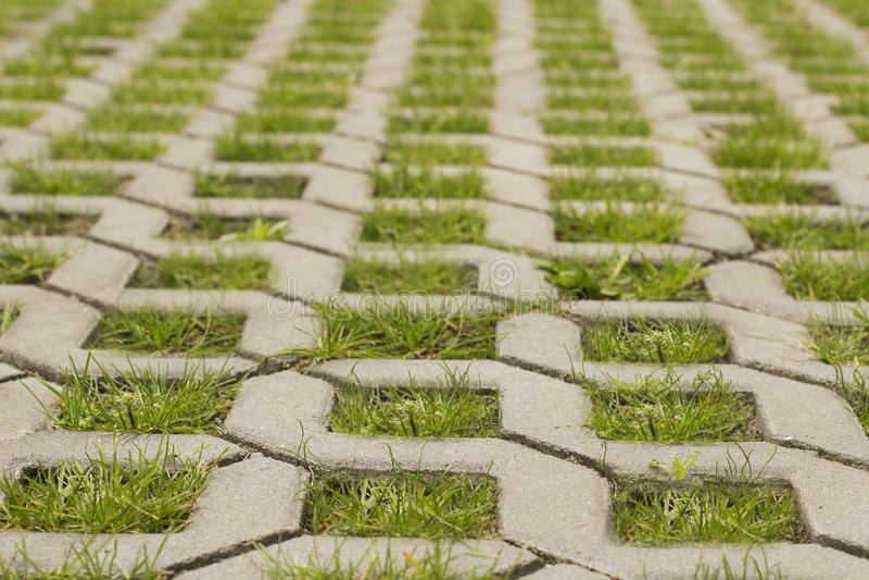 Η πράσινη χλόη αυξάνεται μέσω των κυβόλινθων σε μια μορφή δικτυωτού πλέγματος στοκ φωτογραφία με δικαίωμα ελεύθερης χρήσης