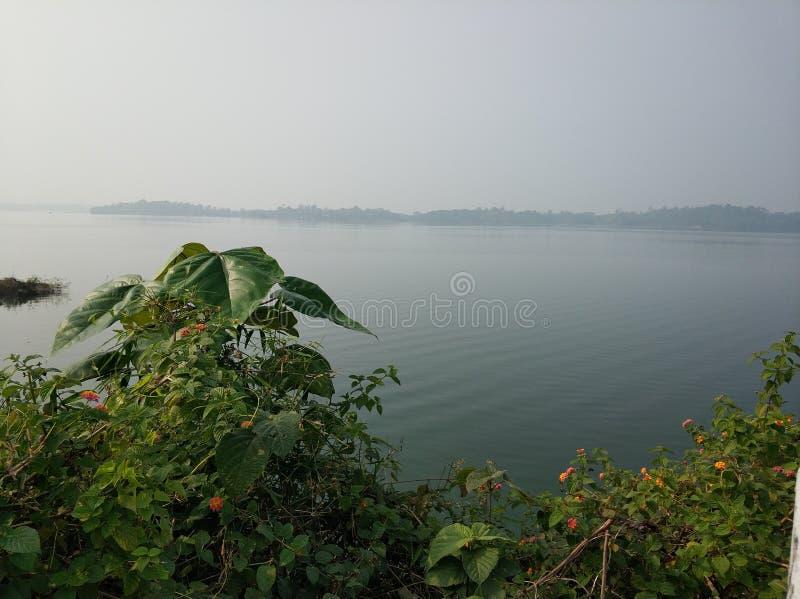 Η πραγματική άποψη μιας λίμνης στοκ εικόνες με δικαίωμα ελεύθερης χρήσης