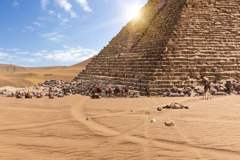 Η πυραμίδα Menkaure και των καμηλών σε Giza, Αίγυπτος στοκ εικόνα με δικαίωμα ελεύθερης χρήσης
