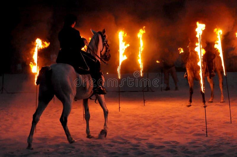 Η πυρκαγιά παρουσιάζει με τα άλογα στοκ εικόνες