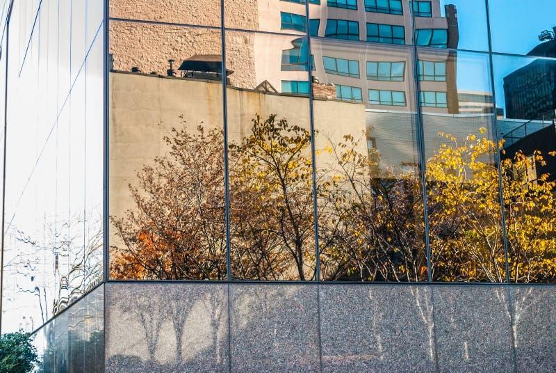η πόλη φθινοπώρου στεγάζει τα δέντρα φύλλων κίτρινα στοκ εικόνα με δικαίωμα ελεύθερης χρήσης