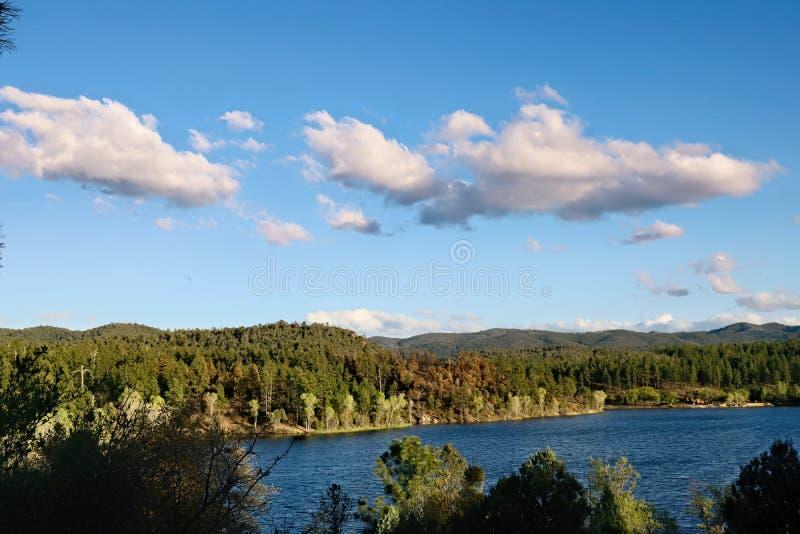 Η σαφής μπλε λίμνη περιβάλλεται από τα δέντρα πεύκων στοκ φωτογραφίες