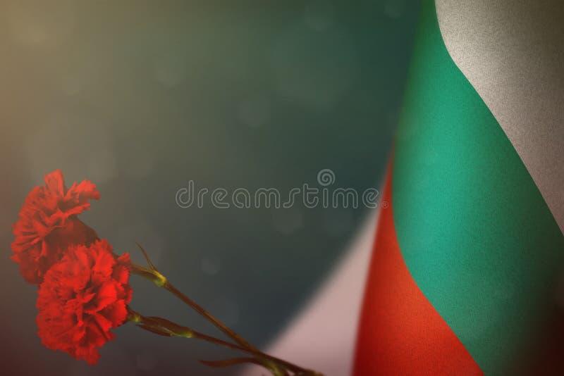 Η σημαία της Βουλγαρίας για την τιμή των παλαιμάχων ή της ημέρας μνήμης με το κόκκινο γαρίφαλο δύο ανθίζει Δόξα στους ήρωες της Β στοκ φωτογραφία