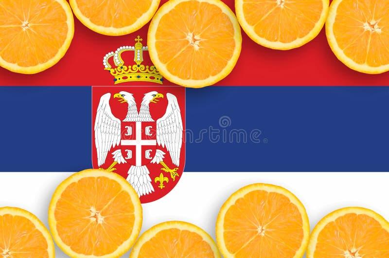 Η σημαία της Σερβίας στο εσπεριδοειδές τεμαχίζει το οριζόντιο πλαίσιο στοκ φωτογραφίες με δικαίωμα ελεύθερης χρήσης