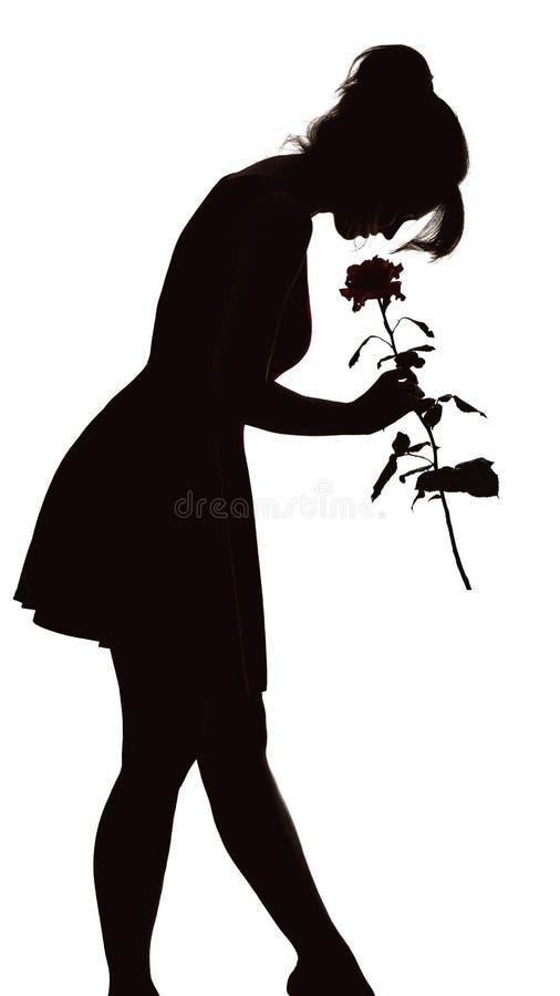 Η σκιαγραφία μιας νέας κομψής γυναίκας σε ένα φόρεμα έγειρε το κεφάλι του στον οφθαλμό ροδαλού, αριθμός του λεπτού όμορφου κοριτσ στοκ εικόνες με δικαίωμα ελεύθερης χρήσης