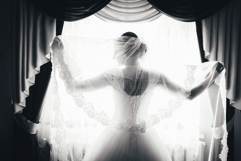 Η σκιαγραφία μιας νύφης στέκεται στο παράθυρο και κρατά ένα πέπλο γραπτό πορτρέτο μιας νύφης από την πλάτη στοκ εικόνα