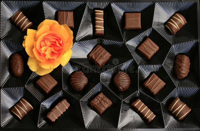 η σοκολάτα κιβωτίων αυξήθηκε στοκ εικόνες