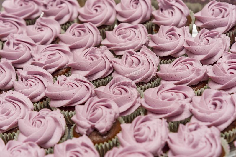 Η σοκολάτα cupcakes που διακοσμήθηκε με στενό επάνω αυξήθηκε διοχετεύοντας με σωλήνες στοκ εικόνες