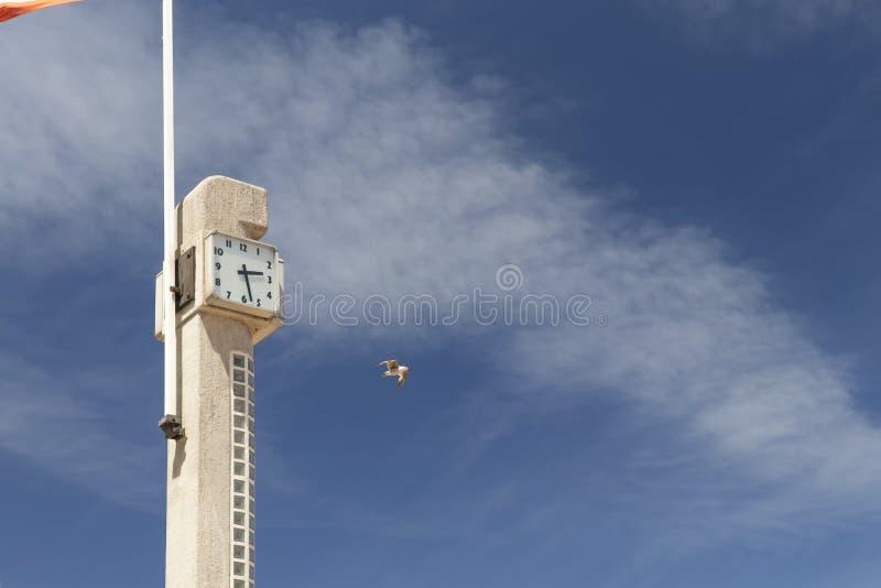 Η συγκεκριμένη Στέλλα στην παραλία με ένα ρολόι και μια σημαία στον ωκεανό στοκ φωτογραφίες με δικαίωμα ελεύθερης χρήσης