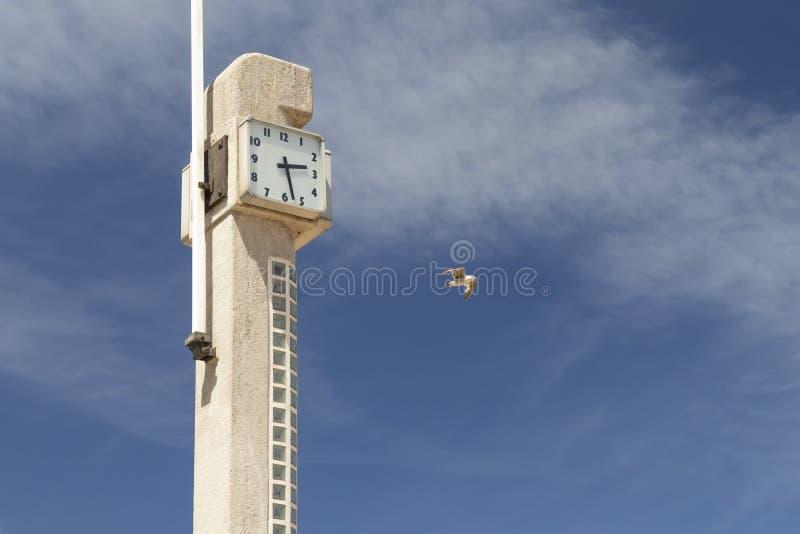 Η συγκεκριμένη Στέλλα στην παραλία με ένα ρολόι και μια σημαία στον ωκεανό στοκ εικόνες με δικαίωμα ελεύθερης χρήσης