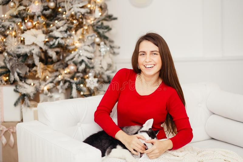 Η σύλληψη είναι καλή χρονιά και Χαρούμενα Χριστούγεννα στοκ εικόνα με δικαίωμα ελεύθερης χρήσης