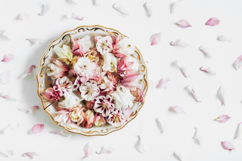 Η σύνθεση πιάτων λουλουδιών, επίπεδη βάζει στοκ εικόνες