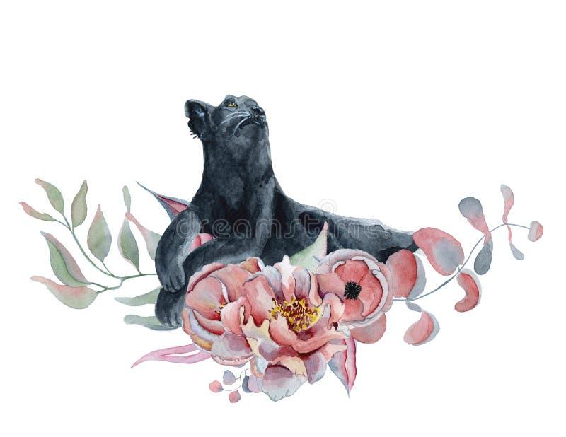 Η σύνθεση Watercolor με το Μαύρο ο πάνθηρας και τα λουλούδια peonies, anemone ελεύθερη απεικόνιση δικαιώματος
