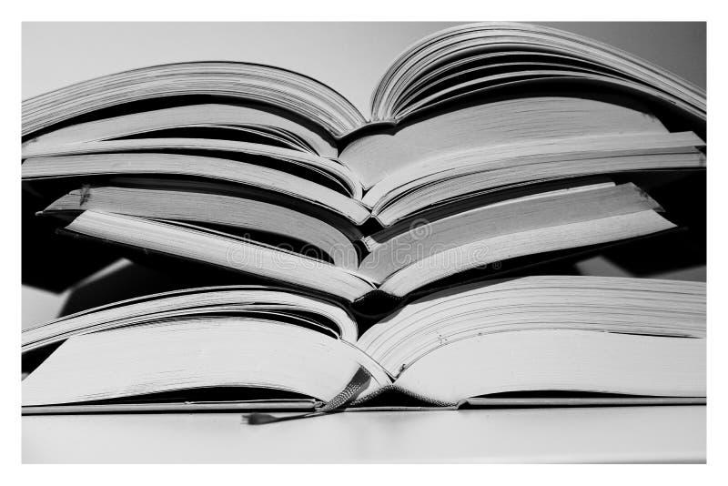 Η τάση προς το δεύτερο βιβλίο στοκ φωτογραφία με δικαίωμα ελεύθερης χρήσης