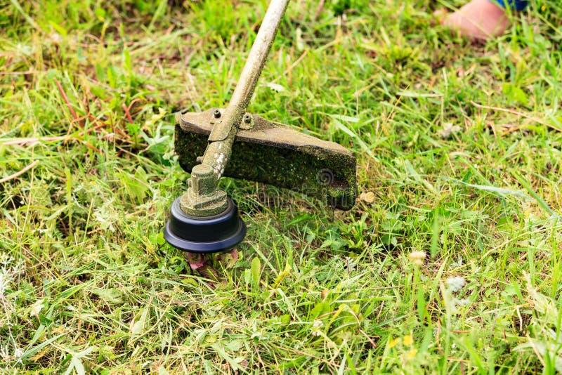 Η τέμνουσα χλόη κηπουρών με το θεριστή χορτοταπήτων στοκ φωτογραφία