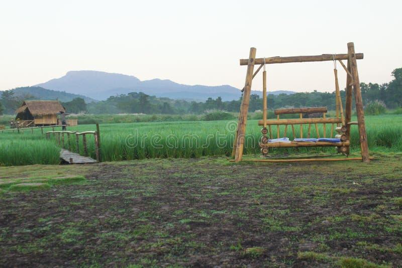 Η ταλάντευση για το κάθισμα ανάμεσα στους τομείς ρυζιού στοκ φωτογραφίες με δικαίωμα ελεύθερης χρήσης