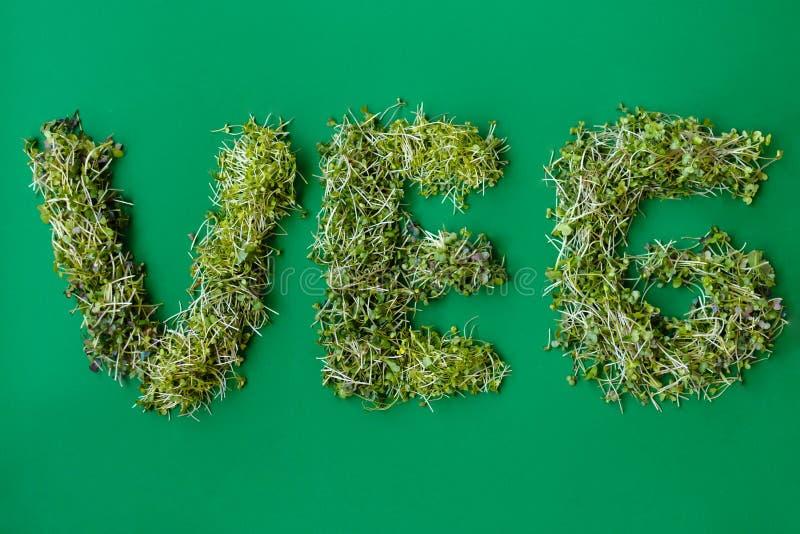 Η τοπ άποψη μιας επιγραφής ένα veg από τα φρέσκα microgreens φυτεύει τα διαφορετικά λαχανικά, σε ένα υπόβαθρο Πράσινης Βίβλου στοκ εικόνα