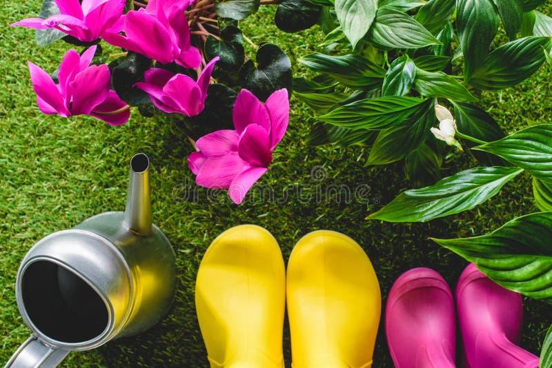 η τοπ άποψη των ζωηρόχρωμων λαστιχένιων μποτών, πότισμα μπορεί και λουλούδια στοκ εικόνες με δικαίωμα ελεύθερης χρήσης