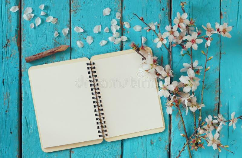 Η τοπ εικόνα άποψης του άσπρου κερασιού άνοιξη ανθίζει δέντρο, ανοικτό κενό σημειωματάριο δίπλα στα ξύλινα ζωηρόχρωμα μολύβια στο στοκ εικόνα με δικαίωμα ελεύθερης χρήσης