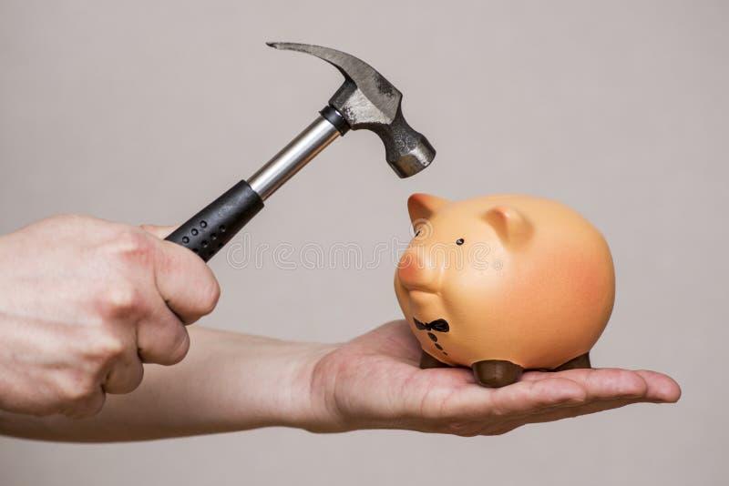 Η τράπεζα Piggy είναι περίπου να χτυπηθεί από ένα σφυρί Αρσενικό χέρι με ένα σφυρί και μια piggy τράπεζα Άτομο με το σφυρί για να στοκ φωτογραφία