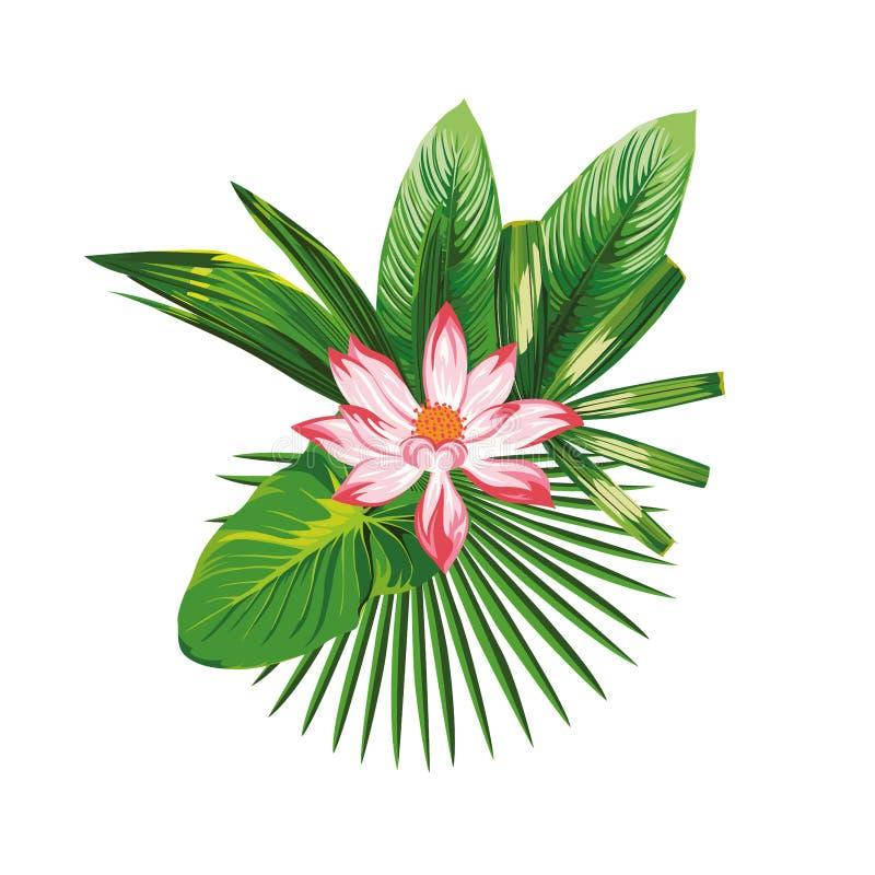 Η τροπική απεικόνιση ανθοδεσμών ανθίζει τα φύλλα διανυσματική απεικόνιση
