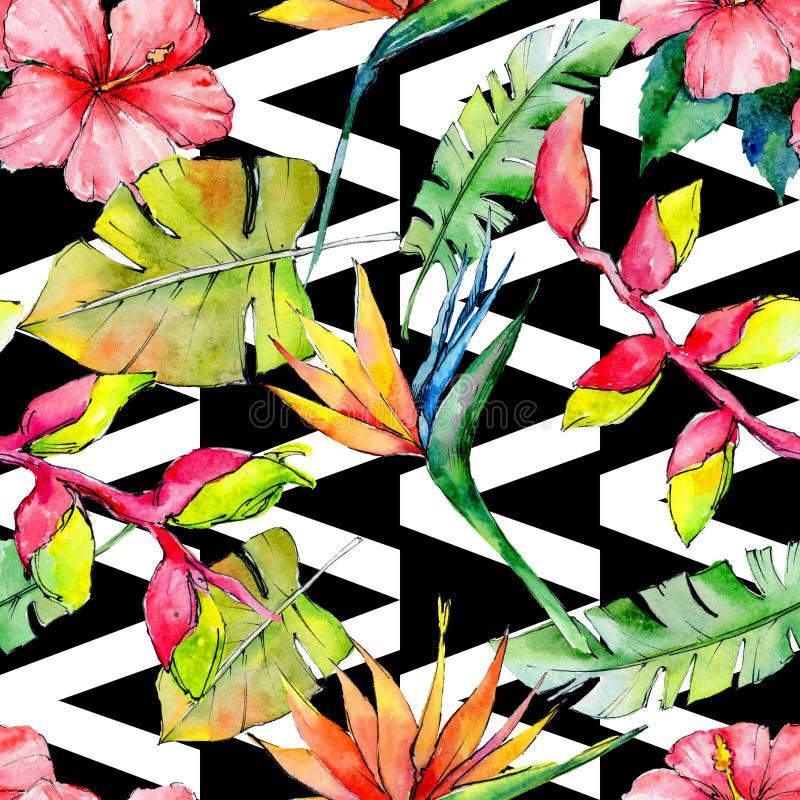 Η τροπική Χαβάη αφήνει το σχέδιο σε ένα ύφος watercolor διανυσματική απεικόνιση