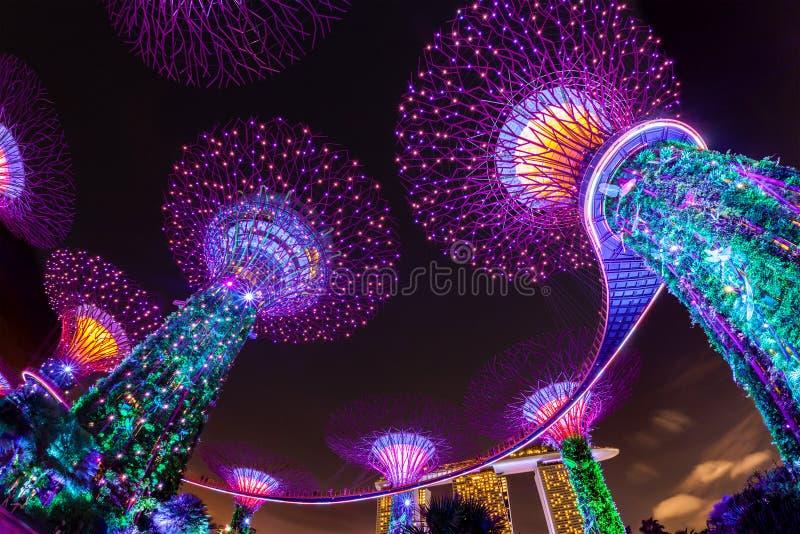 Η τύφλωση ελαφριά παρουσιάζει στους κήπους της Σιγκαπούρης από τον κόλπο στοκ φωτογραφίες με δικαίωμα ελεύθερης χρήσης