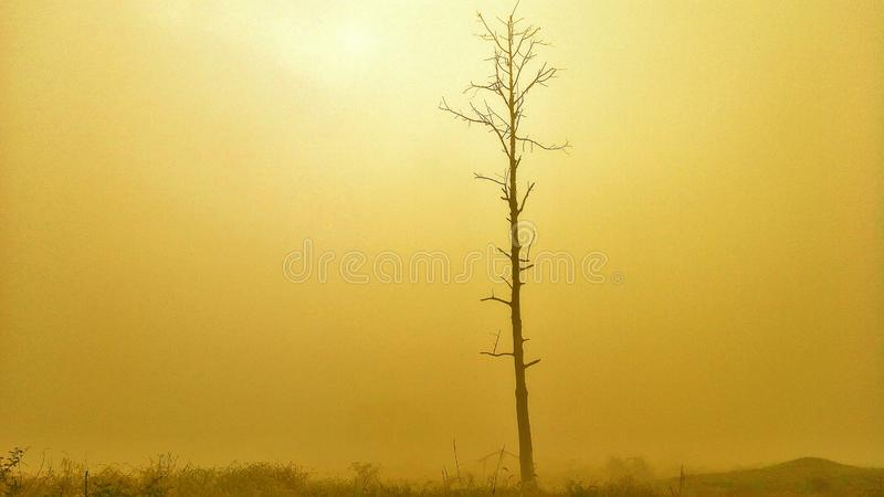 Η υδρονέφωση πρωινού με τον ήλιο δεν λάμπει στοκ φωτογραφίες