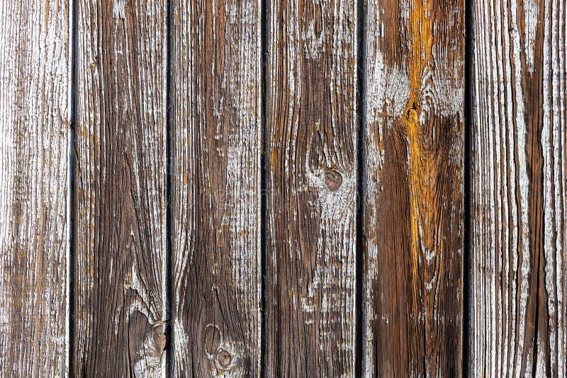 Η υφή λευκού ξύλου με φυσικό φόντο στοκ εικόνες