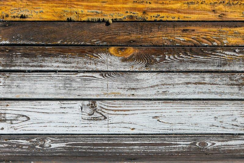 Η υφή λευκού ξύλου με φυσικό φόντο στοκ εικόνα