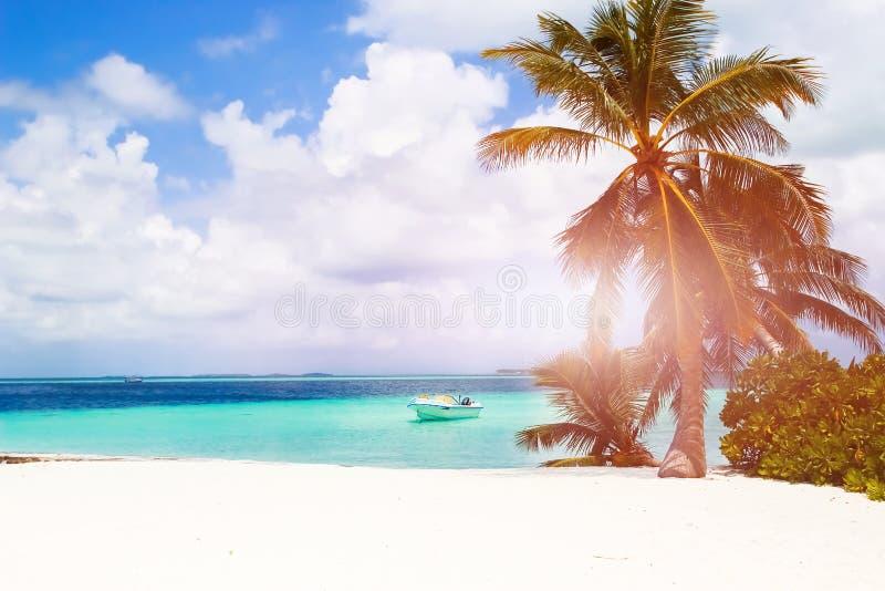 Η φανταστική όμορφη παραλία στο νησί κατοικεί στις Μαλδίβες στοκ φωτογραφία με δικαίωμα ελεύθερης χρήσης