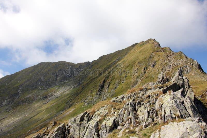 Η φοράδα και Moldoveanu Vistea κρυφοκοιτάζουν στα βουνά Fagaras στοκ φωτογραφία
