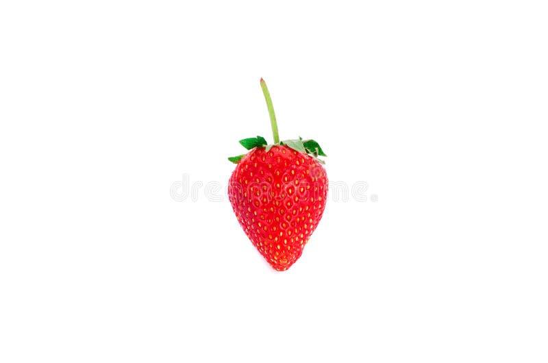 Η φράουλα απομονώνει στο άσπρο υπόβαθρο στοκ φωτογραφίες με δικαίωμα ελεύθερης χρήσης