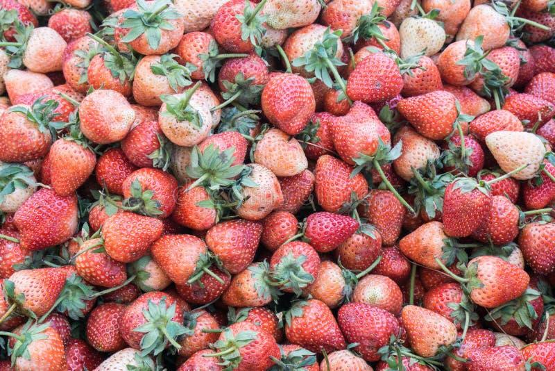 Η φράουλα εμφανίζεται επίσης να φέρνει διάφορα οφέλη για την υγεία , φρέσκια φράουλα στην αγορά , έννοια φρούτων , υγιής έννοια στοκ εικόνα με δικαίωμα ελεύθερης χρήσης