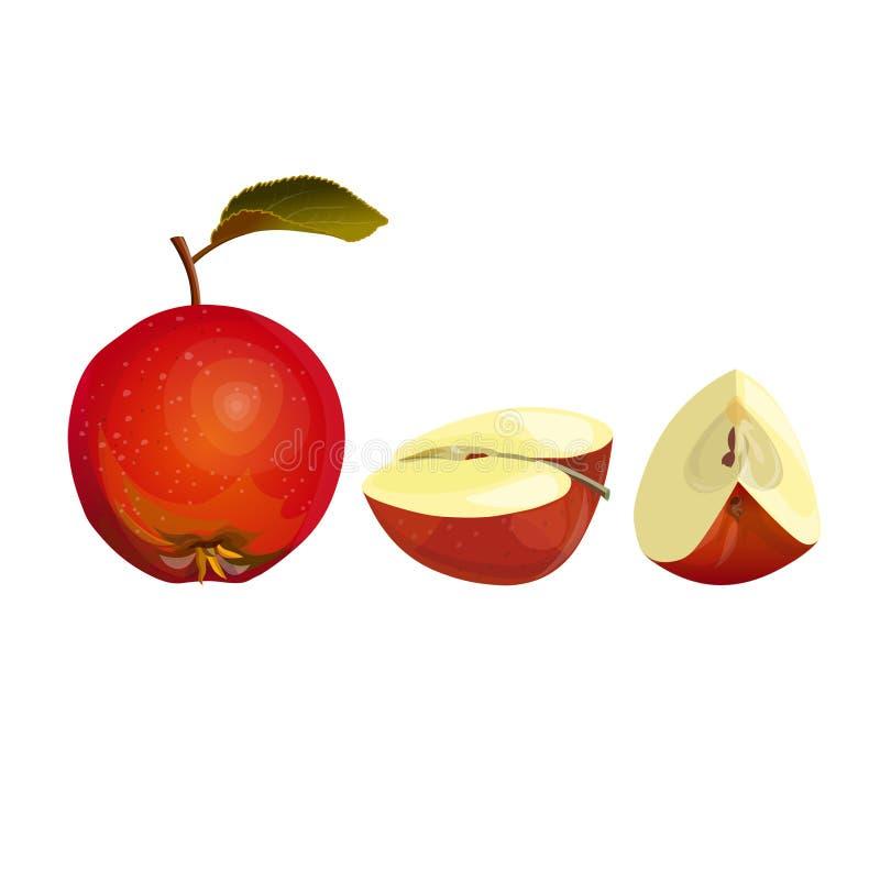 Η φρέσκια κόκκινη Apple ελεύθερη απεικόνιση δικαιώματος
